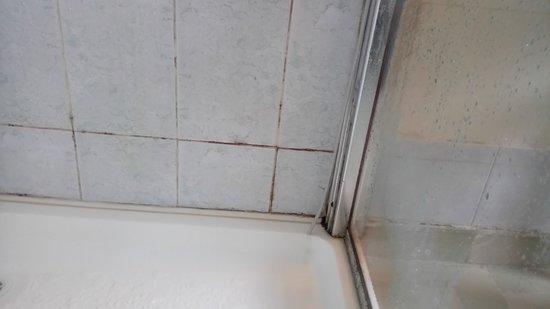 Cratloe, Irland: Shower