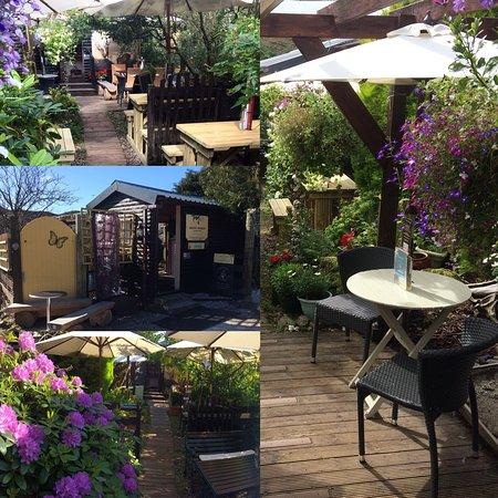 The Secret Tea Garden @ Assynt Aromas