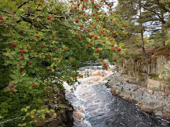 High Force Waterfall: IMG_20180915_131819310_HDR_large.jpg