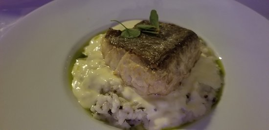 Golden Fish: Seabream over risotto!  Fresh and delicious!
