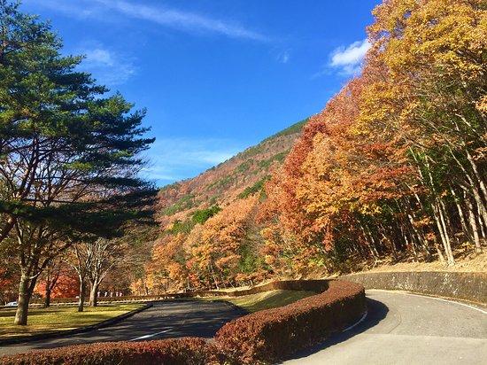 Hakonomori Play Park