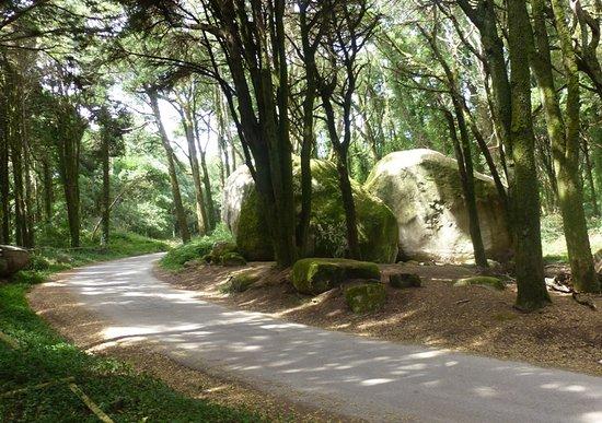 Parque de Merendas das Pedras Irmas