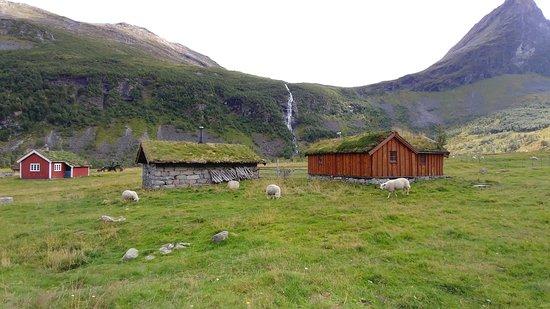 Norddal, Na Uy: Herdal Farm - Gorgeous