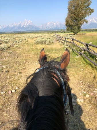 Moose Head Ranch: Best view of the Tetons ever