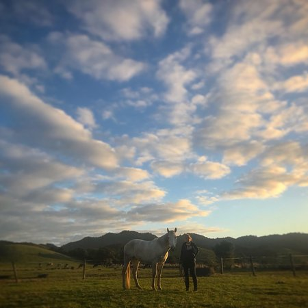Northland Region, Neuseeland: photo8.jpg