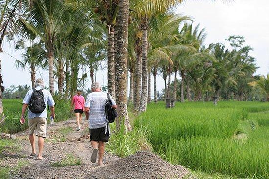 Ubud Bali Trekking