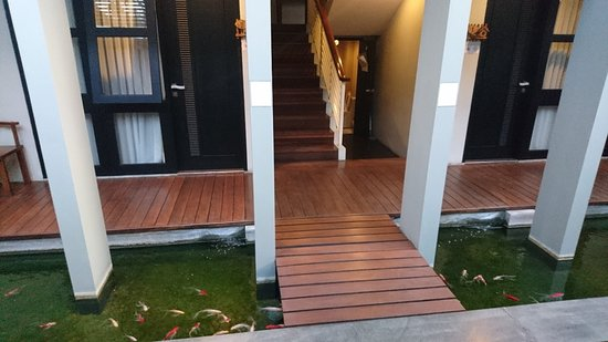 dsc 6523 large jpg picture of cozy boutique guest house malang rh tripadvisor com
