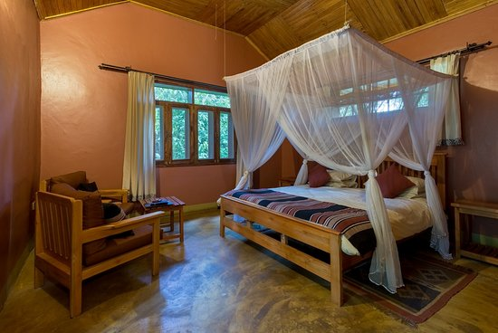 Kibale National Park, Uganda: Facebook-YO9A0119-HDR_large.jpg