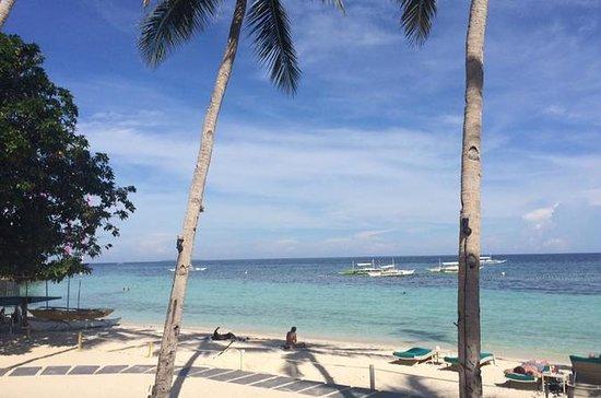 Cebu City: Panglao Island in Bohol...