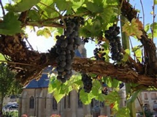 Le Vigan, Frankreich: vue depuis la terrasse