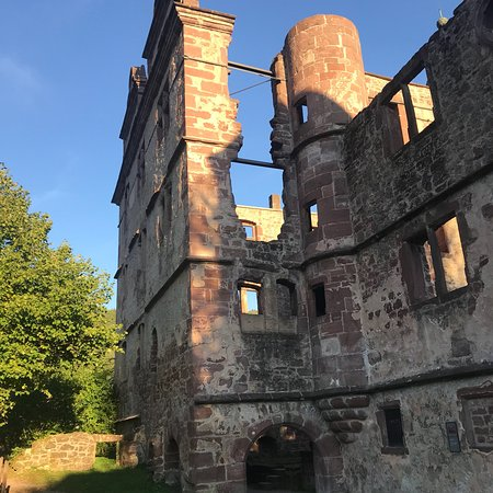Hirsau Schloss Picture