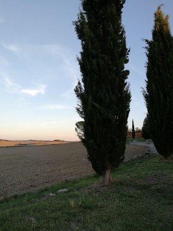 Casanova Pansarine, Italia: IMG_20180911_191327_large.jpg