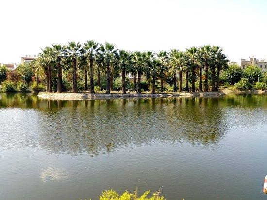 Jardin Jnan Sbil: IMG_20180915_110255659_large.jpg
