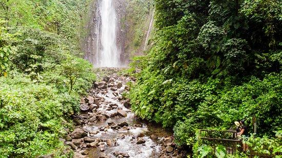 Парк Национальный, Гваделупа: Nous sommes assez près de la chute même si nous ne pouvons pas aller en dessous.