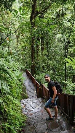 Nationalpark, Guadeloupe: Le chemin aménagé mais parfois glissant