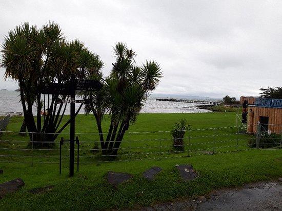 Isle of Jura, UK: 20180826_133721_large.jpg