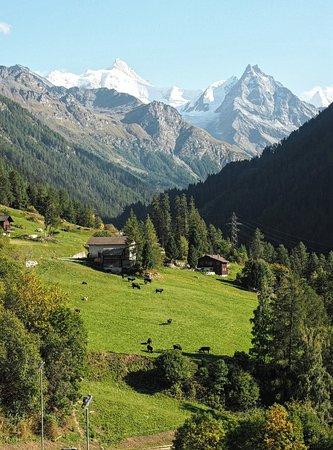 Ayer, Schweiz: OI000750_20180916124635290_large.jpg