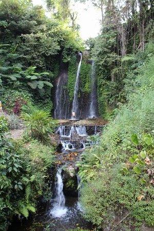 Pucak Manik Waterfall: received_346529775919911_large.jpg