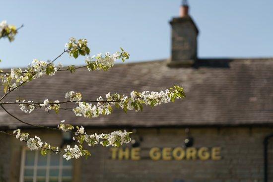 Alstonefield, UK: Spring blossom