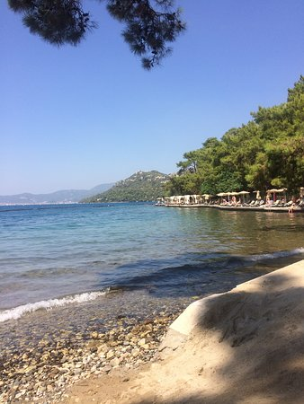 Amazing holiday