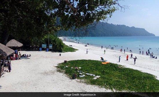 Andaman Discover