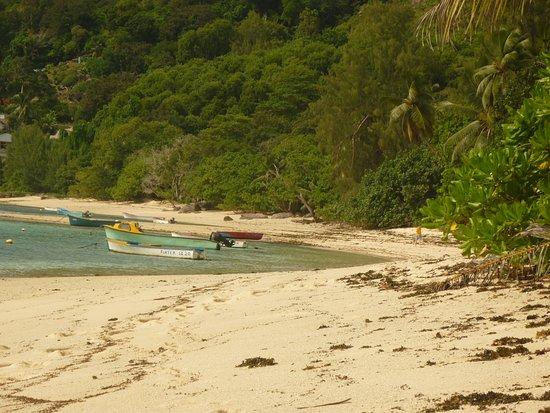 Anse Forbans, Seychelles: plage