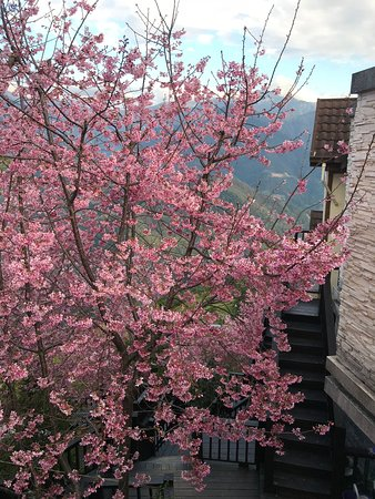 spring ground b b 64 i 1i 5i 1i updated 2018 prices reviews ren ai township nantou tripadvisor