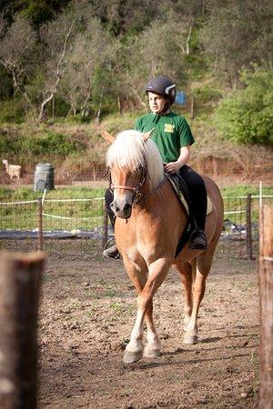 Maissana, Italien: Lezioni di equitazione