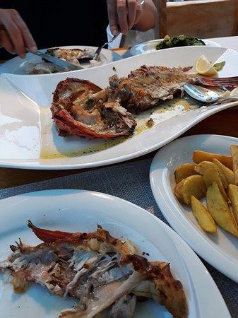 """Kukljica, Croatie : """"Škarpina"""" Red scorpionfish"""