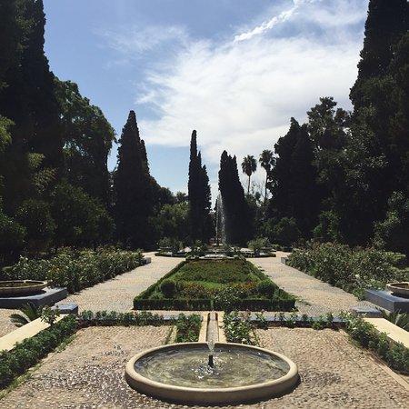 Jardin Jnan Sbil: photo0.jpg