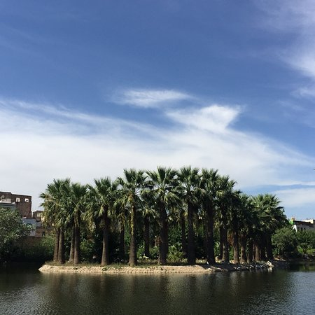 Jardin Jnan Sbil: photo2.jpg