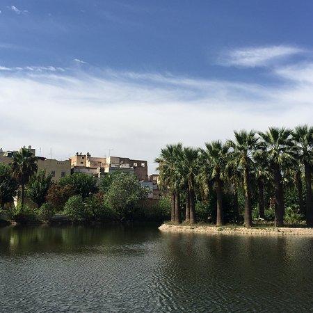 Jardin Jnan Sbil: photo3.jpg