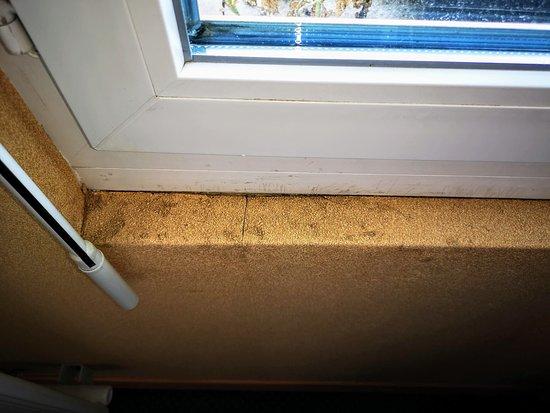 Auberge de la Houssaye: Chambre propre, mais: Bord de fenêtre peu engageant...
