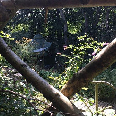 St Blazey, UK: Hidden Hobbit Huts