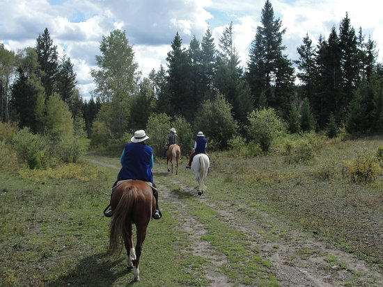 108 Mile Ranch, Kanada: Riding