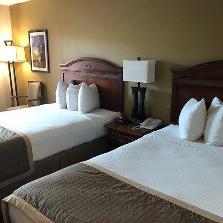 Clean, pet-friendly hotel