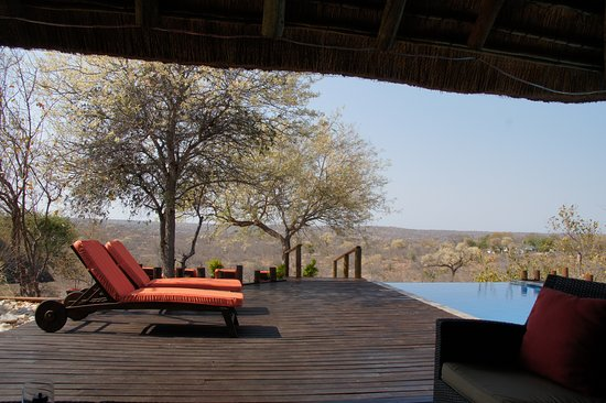 Grietjie Nature Reserve, Sudáfrica: You could lay in the pool and watch the animals - amazing