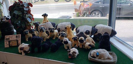 Surry, Мэн: Pugs - decoration inside the ice cream shop