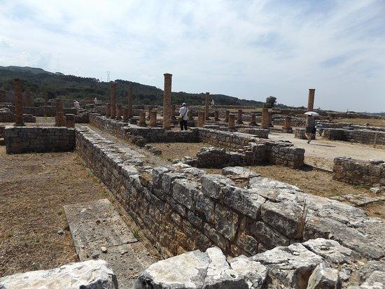 Roman Ruins and Museum of Conimbriga