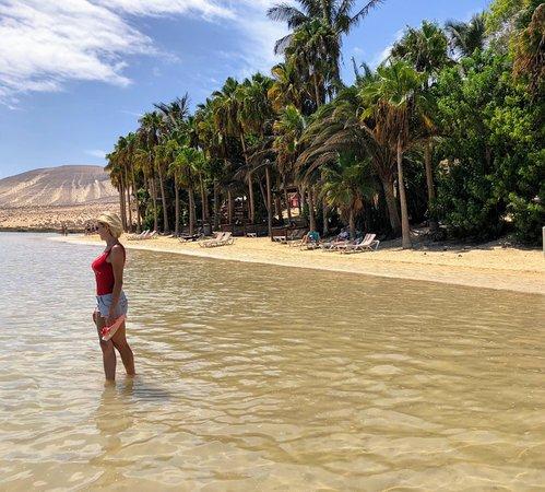 René Egli Fuerteventura: IMG_7906~2_large.jpg