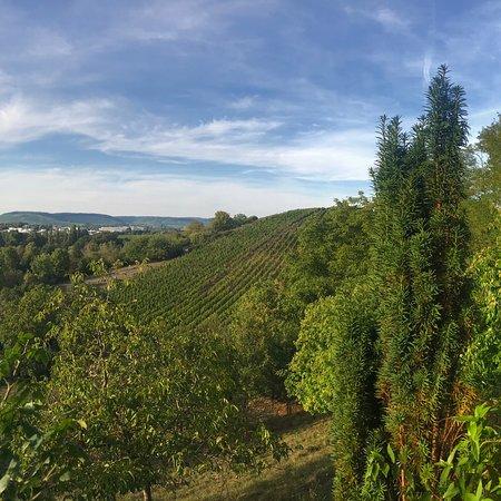 Gutsgaststatte Rappenhof: Rappenhof Weinsberg- Aussicht von der Terrasse