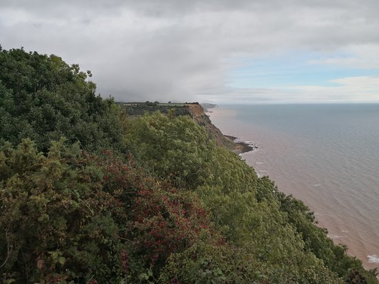 Sidmouth Park