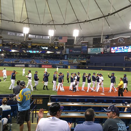 Tropicana Field : photo1.jpg