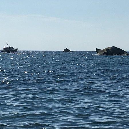 Giardini Poseidon Terme: photo0.jpg