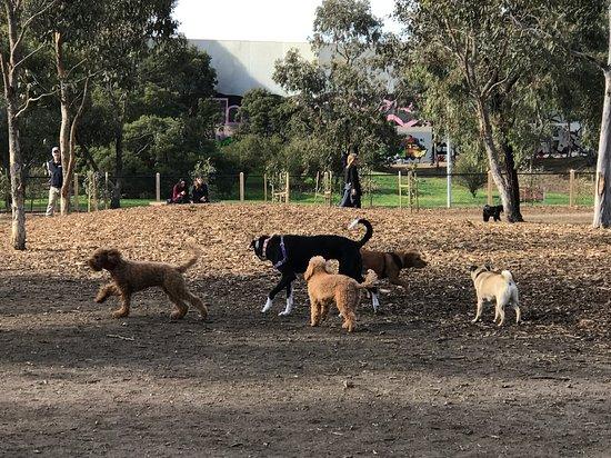 Gilpin park