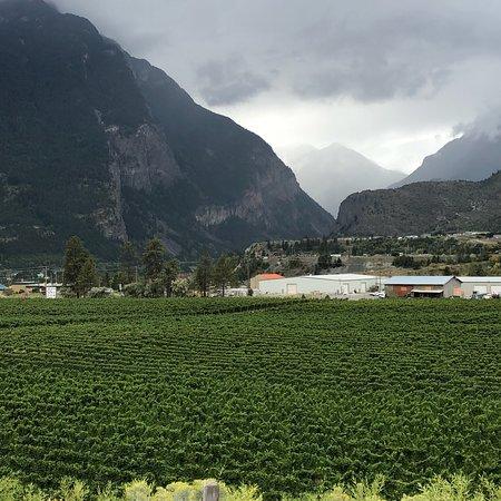 Fort Berens Estate Winery: photo0.jpg