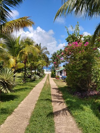 Playa Tranquilo-billede