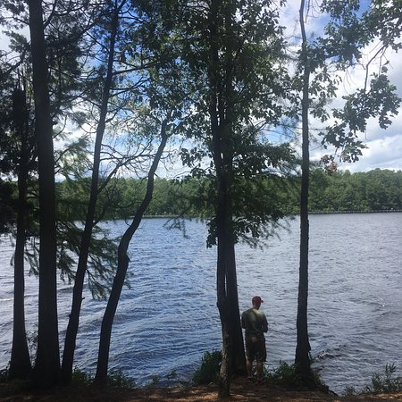 Cheraw, Carolina del Sur: Our favorite state park site number 11 was perfect for us waterfront peaceful relaxing