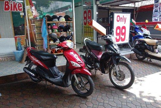Bamboo Bike Chiang Mai