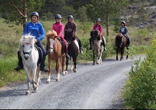Hitra Municipality, Norwegen: getlstd_property_photo